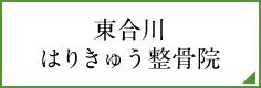 東合川はりきゅう整骨院